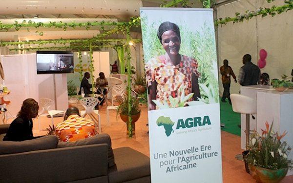Alliance pour une révolution verte en Afrique microsoft